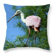 Spoonbill In A Tree Throw Pillow
