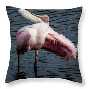 Spoonbill Preening Contortions Throw Pillow