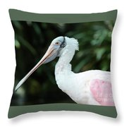 Spoonbill Profile Throw Pillow