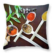 Spoons N Spices 3 Throw Pillow