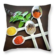 Spoons N Spices Throw Pillow
