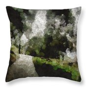 Spot Light On A Fight On A Lone Path Throw Pillow