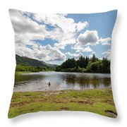 Spot The Swimming Dog In Derwnt Water Lake Throw Pillow