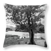 Spot The Woman And Her Dog- Behind The Tree Throw Pillow