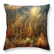 Spotlight On The Marsh Throw Pillow