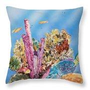 Spotlight Parrotfish Throw Pillow