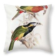 Spotted Bill Aracari Throw Pillow by Edward Lear