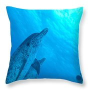 Spotted Dolphins Throw Pillow