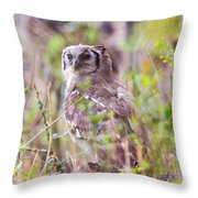 Spotted Eagle Owl  Throw Pillow
