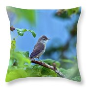 Spotted Flycatcher Muscicapa Striata .  Throw Pillow