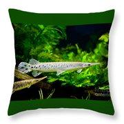 Spotted Gar Aquarium Fishes Pair Throw Pillow