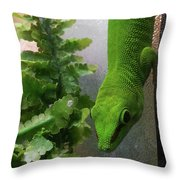 Spotted Gecko Throw Pillow
