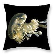 Spotted Lagoon Jellyfish Throw Pillow