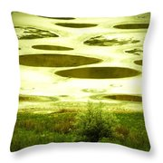 Spotted Lake Throw Pillow