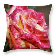 Spotted Rose Throw Pillow
