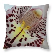 Spotted Slide Throw Pillow