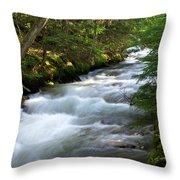 Sprague Creek Glacier National Park 2 Throw Pillow