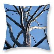 Sprawling Dead Tree Throw Pillow