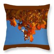 Spray Of Autumn Leaves  Throw Pillow
