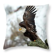 Spread The Wings Throw Pillow