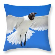 Spread Those Wings Pano Throw Pillow