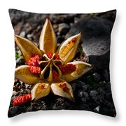 Spread Thy Seed Throw Pillow by Christopher Holmes