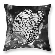 Spread You Wings And Fly Throw Pillow