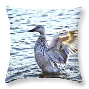 Spreading My Wings Hdr Throw Pillow