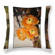 Spring - Desert Style Throw Pillow