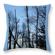 Spring 09  Tree Skyline Throw Pillow