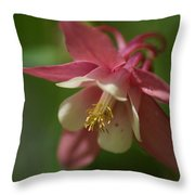 Spring 1 Throw Pillow