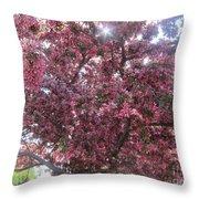 Spring 12 Throw Pillow