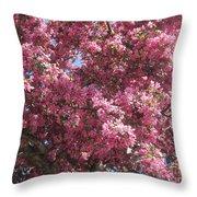 Spring 15 Throw Pillow
