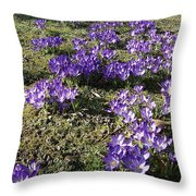 Spring 2 Throw Pillow