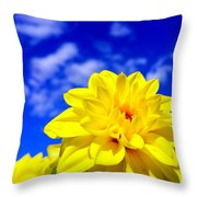Spring 2015-pic18 Throw Pillow