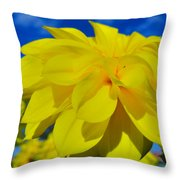 Spring 2015-pic19 Throw Pillow