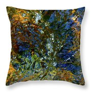 Spring 2017 160 Throw Pillow