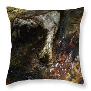 Spring 2017 169 Throw Pillow