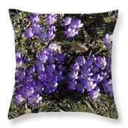 Spring 3 Throw Pillow