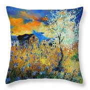 Spring 67 Throw Pillow
