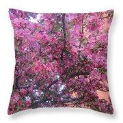 Spring 7 Throw Pillow