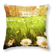 Spring. A Medow Spread With Daisies In Baden-baden, Germany Throw Pillow