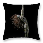 Spring A Sculpture By Adam Long Throw Pillow by Adam Long
