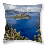 Spring Afternoon From Discovery Point Throw Pillow