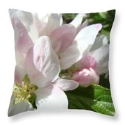 Spring Apple Blossoms Art Prints Apple Tree Baslee Troutman Throw Pillow