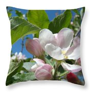 Spring Apple Blossoms Pink White Apple Trees Baslee Troutman Throw Pillow