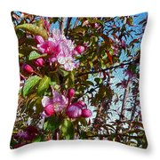 Spring Apple Blossoms- Spring Flowers Throw Pillow