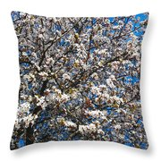 Spring As Rhapsody Throw Pillow