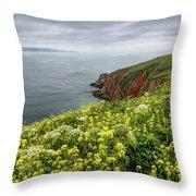Spring At Chimney Rock Throw Pillow