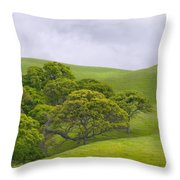 Spring At Del Valle Throw Pillow
